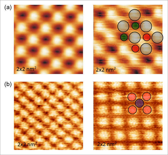 the role of atomic force microscopy essay Free microscope papers, essays, and research papers  the role of the  scanning probe microscopy in nano-mechanical testing -  these waves don't  end.